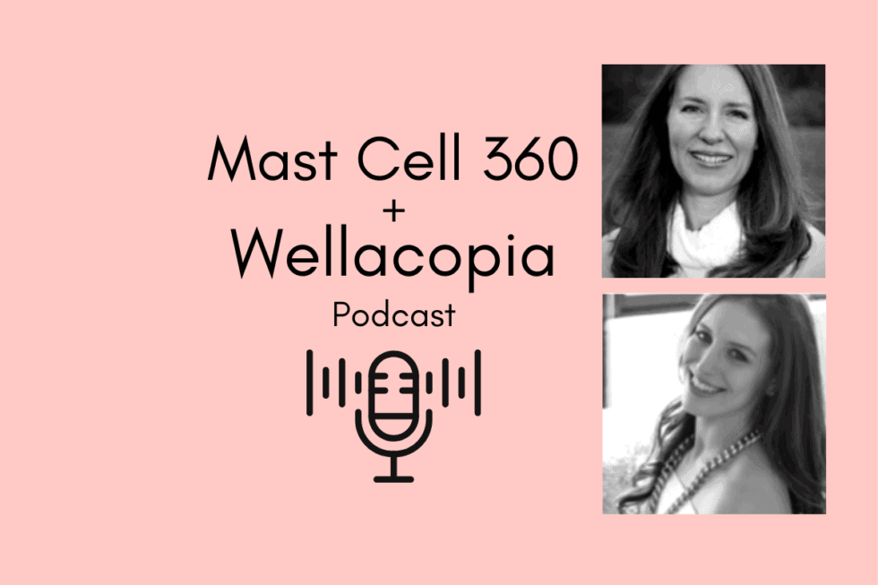 Wellacopia Podcast Invisible Not Broken - Part 1