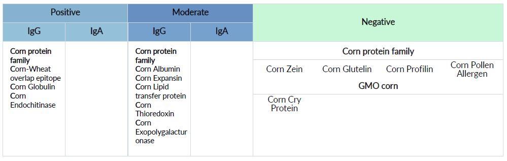 Mast Cell 360 Corn Zoomer