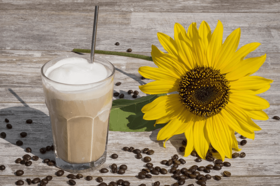 Low Histamine Frozen Vanilla Coffee Cooler Recipe