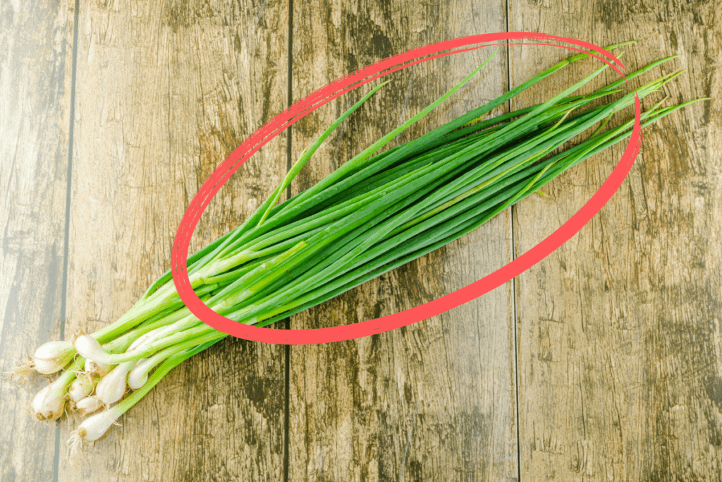 Green Onions Mast Cell 360