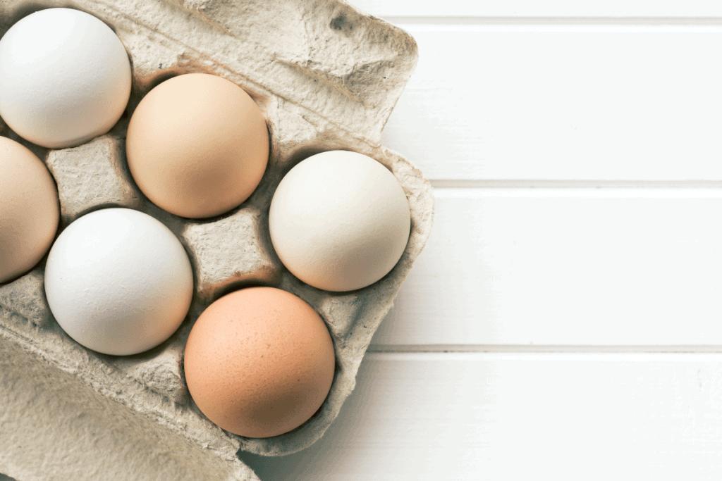 Pasture Raised Eggs Mast Cell 360