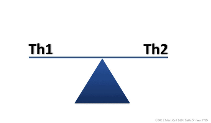 TH1 and TH2 Balanced MC360